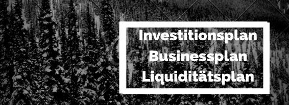 Investitionsplan und Businessplan erstellen