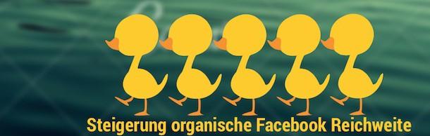 Erhöhung der organischen Facebook Reichweite mit 5 Marketing Tipps