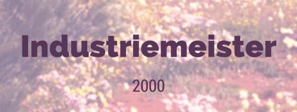 Industriemeister 2000 Elektro